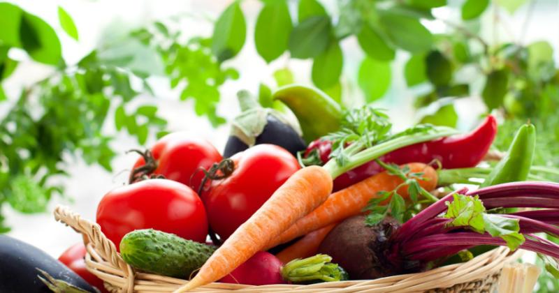 Grønnsaker er rike på antioksidanter, fiber, vitaminer og mineraler, lite kalorier