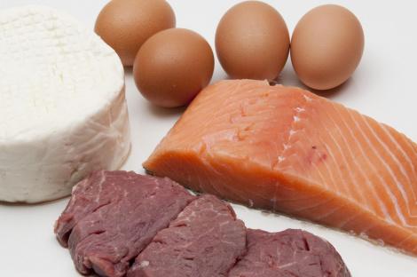animalsk protein helse