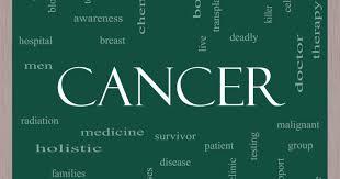 vegetarisk-vegansk-plantebasert-forebygge kreft