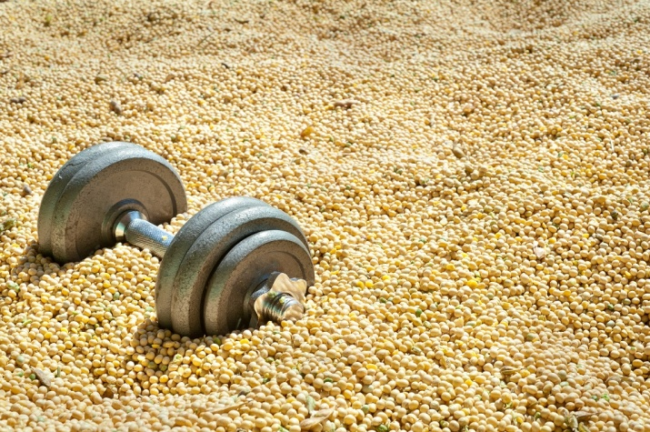 Bønner, linser, nøtter og fullkorn er gode kilder til protein og aminosyrer ved trening